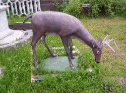 MX , Wael, Yard statues 007