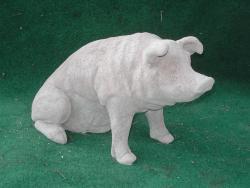 Pig Sitting Large