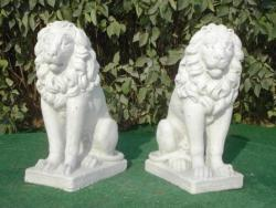 Sitting Lion, Right & Left, Medium